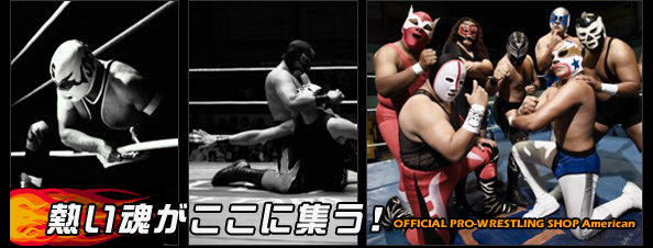 【on-line Pro- wrestling shop】